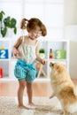Kid girl and cute dog at home Royalty Free Stock Photo