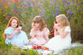 Kid girls eat vegetarian food at the picnic on summer field Royalty Free Stock Photo