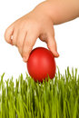 Kid hand holding red easter egg over green grass Royalty Free Stock Images