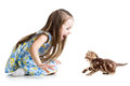 Kid playing with cat kitten child girl Royalty Free Stock Photo