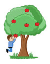 Kid plucking an apple conceptual drawing art of cartoon cute playing in the garden and trying to catch some apples from tree Stock Photos