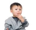 Kid snacking on cracker isolated white Royalty Free Stock Image