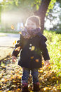 Kid throws yellow leaves in autumn park golden Stock Image