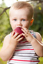 Kid is trying to have a red apple Royalty Free Stock Photo