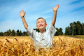 Kid in wheat field Royalty Free Stock Photography