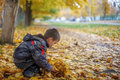 Kid with yellow leaves on the alley Stock Photos