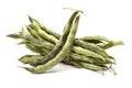 Kidney bean green on white background Royalty Free Stock Photos