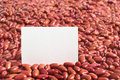 Kidney Beans with Blank Card Royalty Free Stock Image