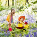 Kids with bluebell flowers, garden tools Royalty Free Stock Photo