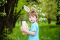 Kids on Easter egg hunt in blooming spring garden. Children searching for colorful eggs in flower meadow. Toddler boy and his brot