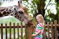 Kids feed giraffe at zoo. Children at safari park. Royalty Free Stock Photo