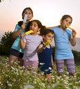 Kids having pop ice Stock Images