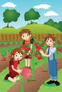 Kids planting vegetables and fruits a vector illustration of in a garden Royalty Free Stock Photography