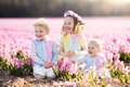 Kids playing in flower field Royalty Free Stock Photo