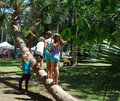 Kids playing on palm tree children at play climbing a trunk outside in warm weather at an outdoor festival Stock Photos