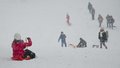 Kids on the sledge sledging in snow bucharest romania Royalty Free Stock Photos