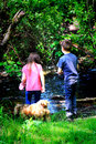 Kids stream doggie two little exploring and playing by a in the woods with their shallow depth of field Stock Photography