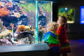 Kids watching fish in tropical aquarium Royalty Free Stock Photo
