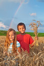 Kids in wheat field at harvest time Royalty Free Stock Photo
