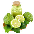 Kiffir lime or leech lime citrus hystrix dc natural hair and skin care from on white background Stock Images