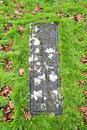 Kildalton burial slab Royalty Free Stock Photography