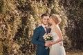 Kilka zdjęć romantyczny ślub sesji Fotografia Stock