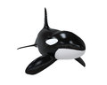 Killer whale isolated on white background d render Stock Images