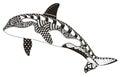 Killer whale zentangle stylized, vector, illustration, freehand