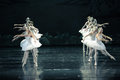 By the killing curse the girl into a swan ballet swan lake in december russia s st petersburg theater in jiangxi nanchang Royalty Free Stock Photography