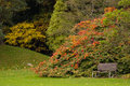 Kilruddery House & gardens. bench. Ireland Royalty Free Stock Image