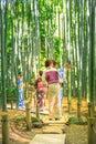 Take-dera traditional path