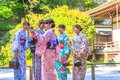 Kimono women in Bamboo Forest