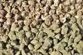 Kinesisk grön tea Arkivfoton