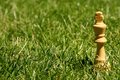 King chess piece on grass Royalty Free Stock Photo