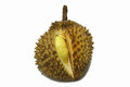 King of fruits, durian Royalty Free Stock Image