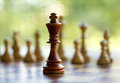 King in the middle of the chessboard with other figures background Stock Image