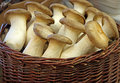 King oyster mushrooms photo of delicious in a wicker basket photo taken th may Stock Image