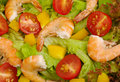 King Prawn Salad Royalty Free Stock Photo