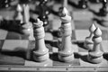 King and queen side by side on a chessboard black white photograph Stock Image