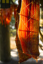 King salmon fish meat catch hanging native american lodge drying is cut and hanged to dry outdoors in the Stock Image