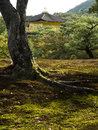Kinkakuji golden pavilion seen from the garden temple in kyoto as Stock Images