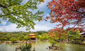 Kinkakuji temple the golden pavilion in kyoto japan maple trees with Royalty Free Stock Photos