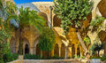 The kirche s garden jerusalem israel february scenic green in courtyard of lutheran of redeemer on february in jerusalem Stock Photos