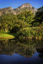 Kirstenbosch botanical garden pond in suburb of cape town western cape south africa Stock Photos