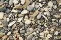 Kiselstenar och stenar som är våta textur bakgrund Arkivfoton