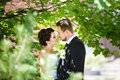 Kiss of bride and groom Royalty Free Stock Photo