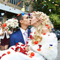 Kiss happy newlyweds and flying red and white petals Stock Images