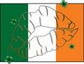 Kiss Me I'm Irish Flag
