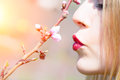 Kiss of spring Royalty Free Stock Photo