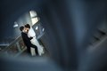 Kissing couple in love standing on a ladder taken over the railing of the upper floors Stock Images
